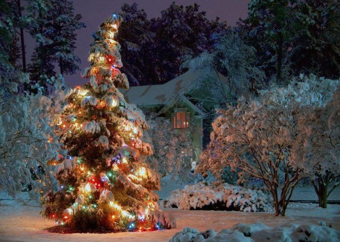 Новогодняя елка, космос и плоская земля.